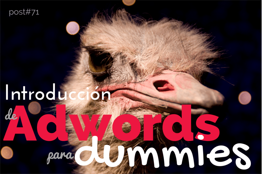 Guía de Adwords para dummies. Introducción