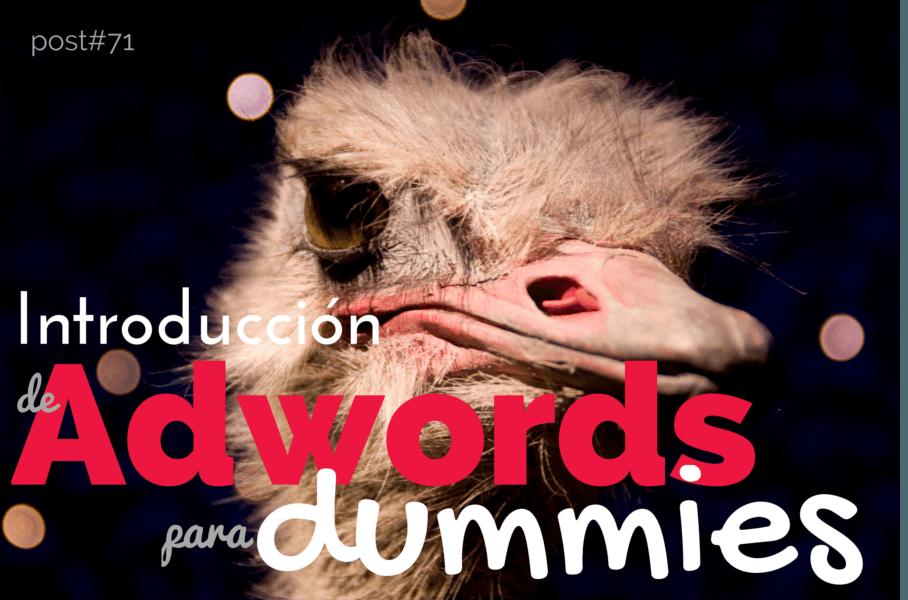 Introducción a una guía para dummies en Adwords.